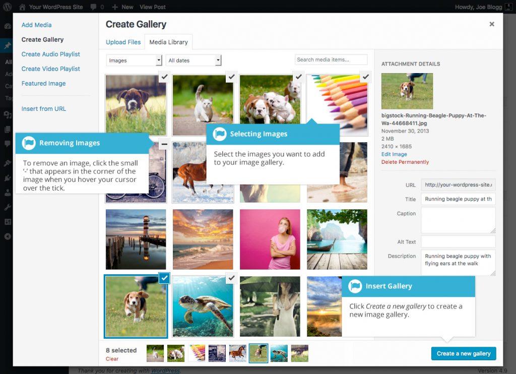 WordPress Create New Gallery