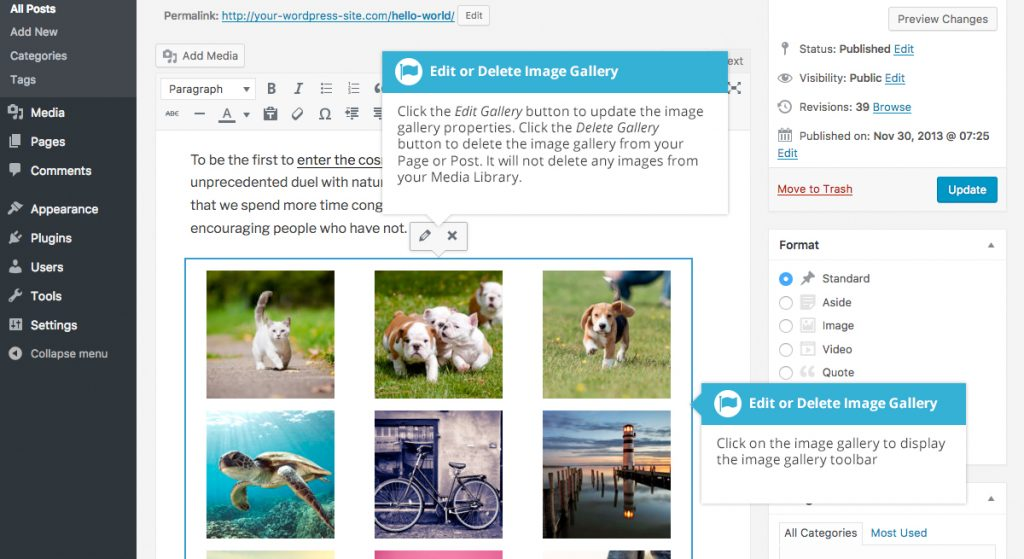 WordPress Edit Media Gallery