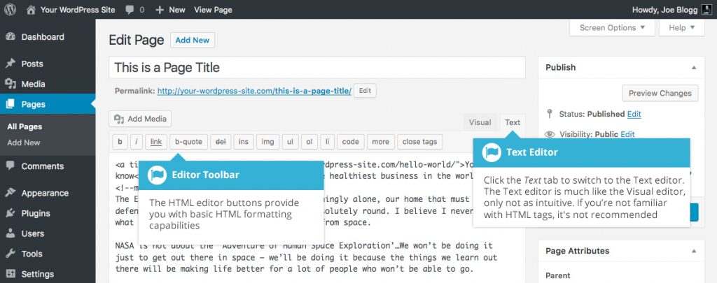 WordPress Switching Editor